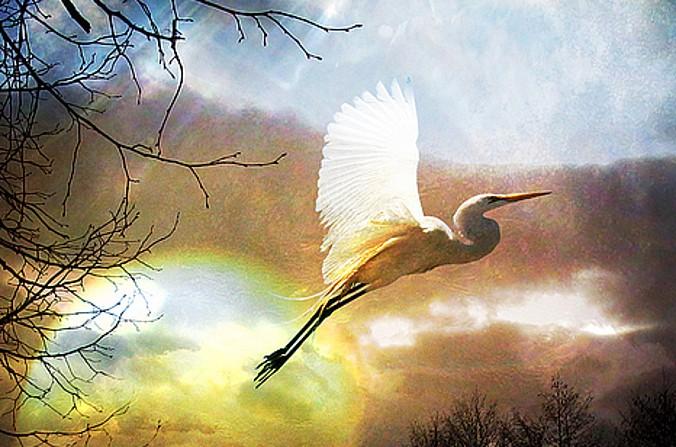 Na dobranoc i dzień dobry – Łk 24, 46-53